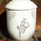 Vanda urna - rózsa