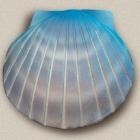 Kék kagyló urna