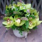 Ravataldísz kerámia alapon, zöld orchideával